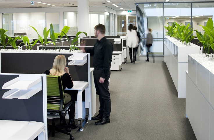 Mkdc downer edi mining downer edi mining office pinterest planters and cubicles - Cubicle planters ...