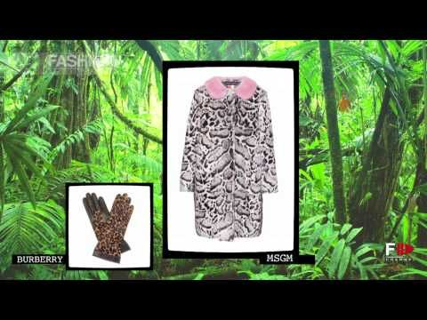 """▶ """"WELCOME TO THE ZOO"""" Fashion Trends Fall 2013 2014 by Fashion Channel - YouTube"""