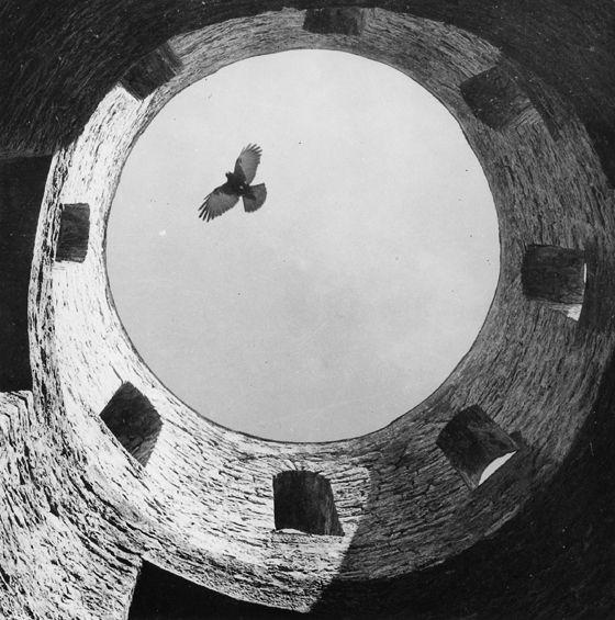 Ludwig Windstosser :: Neckartal (Bird), ca. 1950