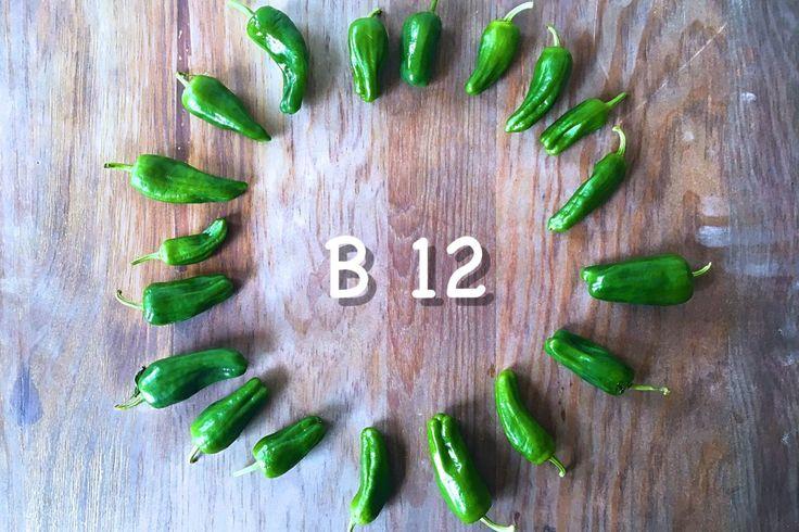 Witamina B12 – Roślinożercy i Nie Tylko