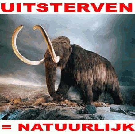 Uitsterven is natuurlijk, dieren redden is onzin