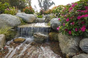 17 best images about for hazel on pinterest gardens for Garden waterfalls do it yourself