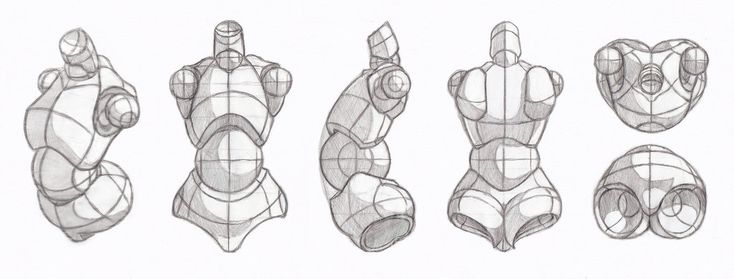 Copy's and Studies: Nsio's mannequin torso lineup by WonderingMind23 on DeviantArt
