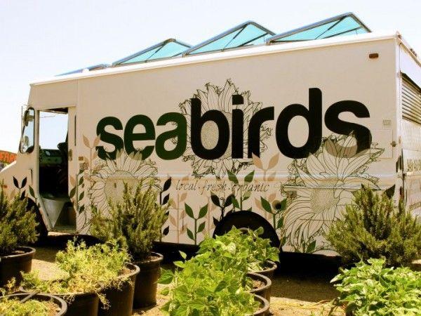 Seabirds Food Truck Owner
