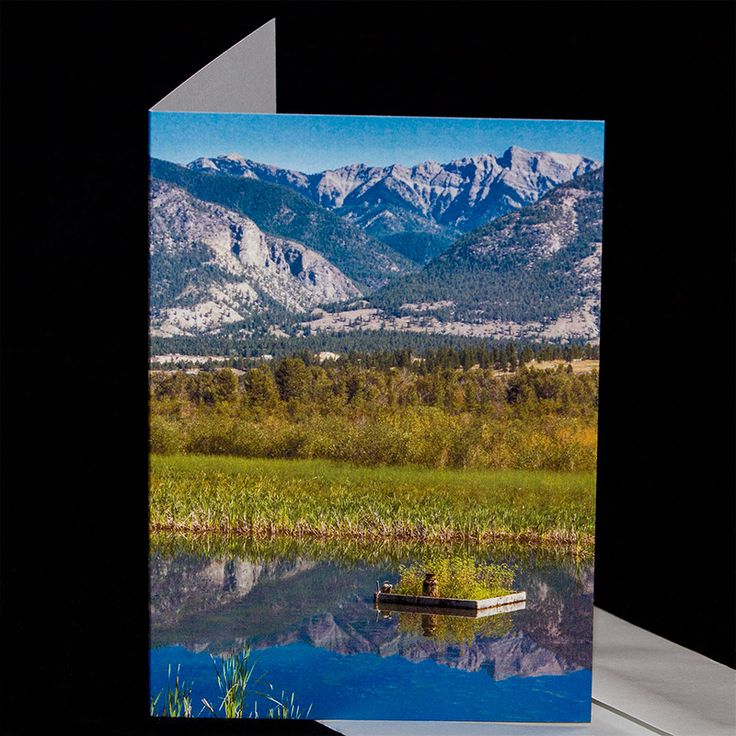 **20% OFF** everything! Photo greeting cards, digital downloads, and combination packs! Buy here: https://www.etsy.com/ca/shop/TanyaDeLeeuwPhoto?ref=hdr_shop_menu Thanks!