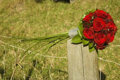Red Rose Wedding xx