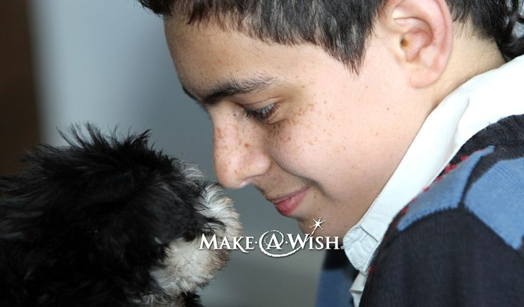 Little Lot | Thank you from Make-a-Wish from Make-A-Wish New Zealand | Feb 20