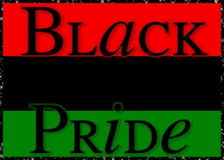"""""""Show me a group of people without a flag and I will show you a group of people without Pride""""    -Marcus Garvey"""