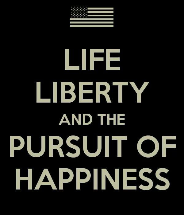 Life Liberty And The Pursuit Of Happiness Quote: 29 Best The Homefront WWll Images On Pinterest