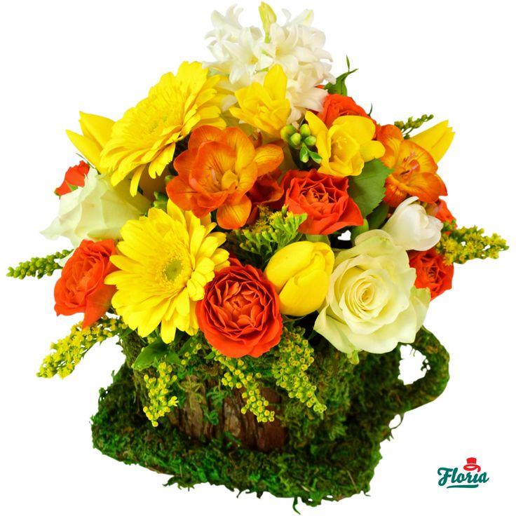 Un aranjament de flori concentrat de bucurie, care ii va improspata diminetile, ii va indulci zilele si ii va face serile mai placute.   Aranjamentul de flori contine: 3 mini gerbera galbena, 3 lalele galbene, 3 frezii albe, 1 frezie galbena, 2 minirosa portocalii, 3 trandafiri albi, 1 zambila alba, 1 solidgo, 1 trahelium, 2 frezii portocalii.