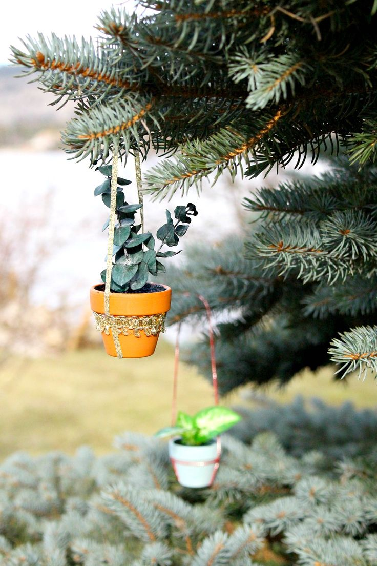 How to make a mini potted plant Christmas tree ornament - Anthropologie ornament knock off. #diy #christmasdecor #handmadeholiday #holidaycheer