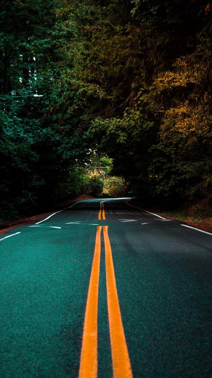 Road Marking Turn Trees Asphalt Wallpaper Dslr Background Images Blur Background Photography Picsart Background