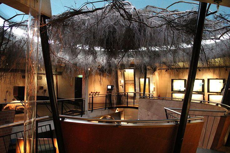 Museonder Museum