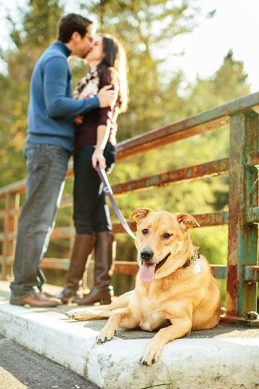 Fall Engagement photos with dogs - couple kissing with their dog in