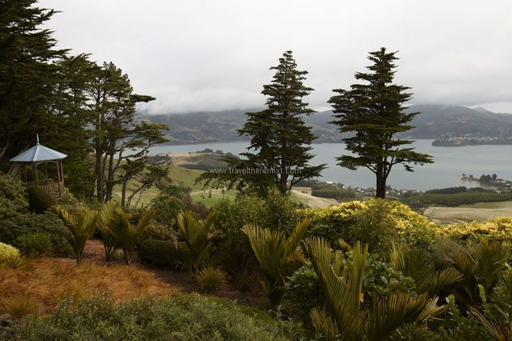 Larnach Castle - The garden of Larnach Castle  #newzealand #dunedin #southisland #larnach #castle #discover #thingstodo #fun #travel #traveltherenext