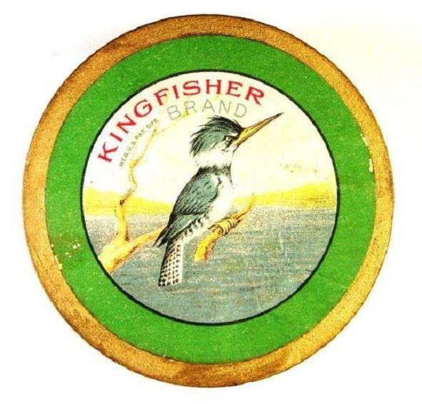 Tight Lines Tuesday Kingfisher Introduces Color Pesca