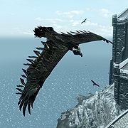 """So here is that elusive """"Bone Hawk"""" that is used in making the amulet!! I could never find one!  And he's only around Castle Volkihar in the DLC of Dawnguard. Once they respawn, they cannot never die again - wow!"""