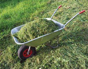 Organic Fertilizer Best Buys - Organic Gardening - MOTHER EARTH NEWS
