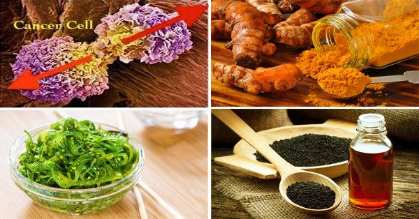 Cancer Cells Hate These 15 Foods, Time To Start Eating Them! - Central Readers
