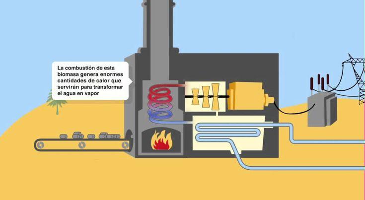 Cómo funciona una central eléctrica de biomasa