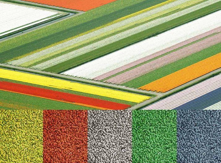 van Besouw - 3805 tapijt katoen, uiteraard te koop bij Eurlings Interieurs https://www.facebook.com/eurlingsinterieurs http://www.eurlingsinterieurs.nl/