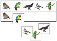Birds Match-Up & Memory & clothes pin game