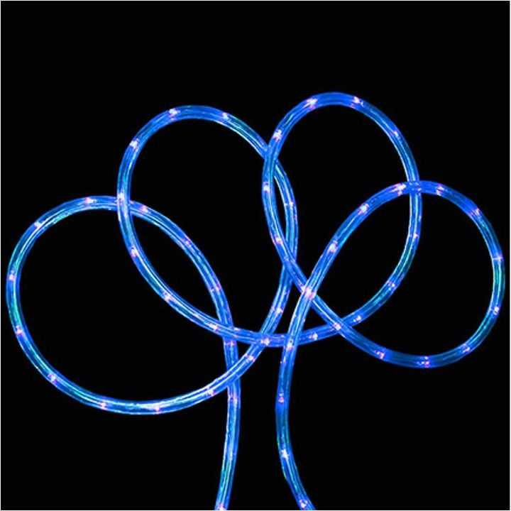 Asstd National Brand 18' Blue LED Indoor/Outdoor Rope Lights with 2 Bulb Spacing