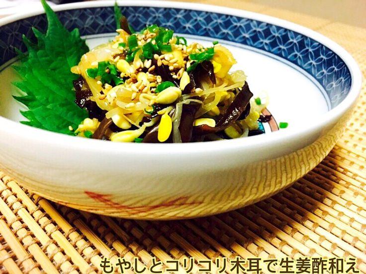 じゅんけ's dish photo 咲きちゃんの料理 もやしとコリコリ木耳で生姜酢和え | http://snapdish.co #SnapDish #レシピ #再現料理 #野菜料理 #簡単料理 #おつまみ