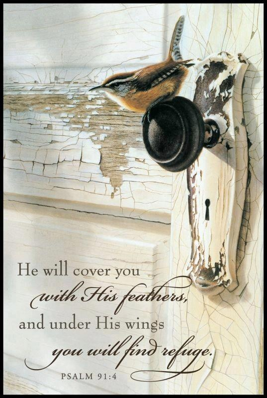 Psalm 91:4...I love the scripture & picture