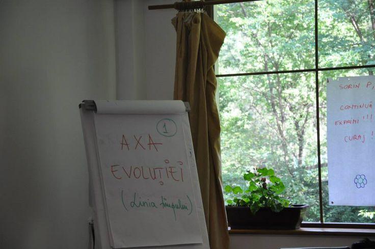 exercitiu bootcamp-8
