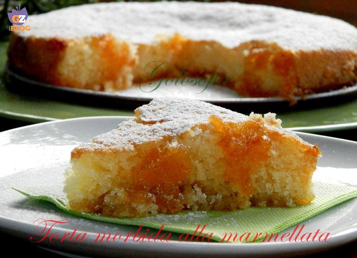 Torta morbida alla marmellata di albicocche, un dolce sofficissimo e goloso, con poco lievito. Ottimo a colazione o come deliziosa merenda!