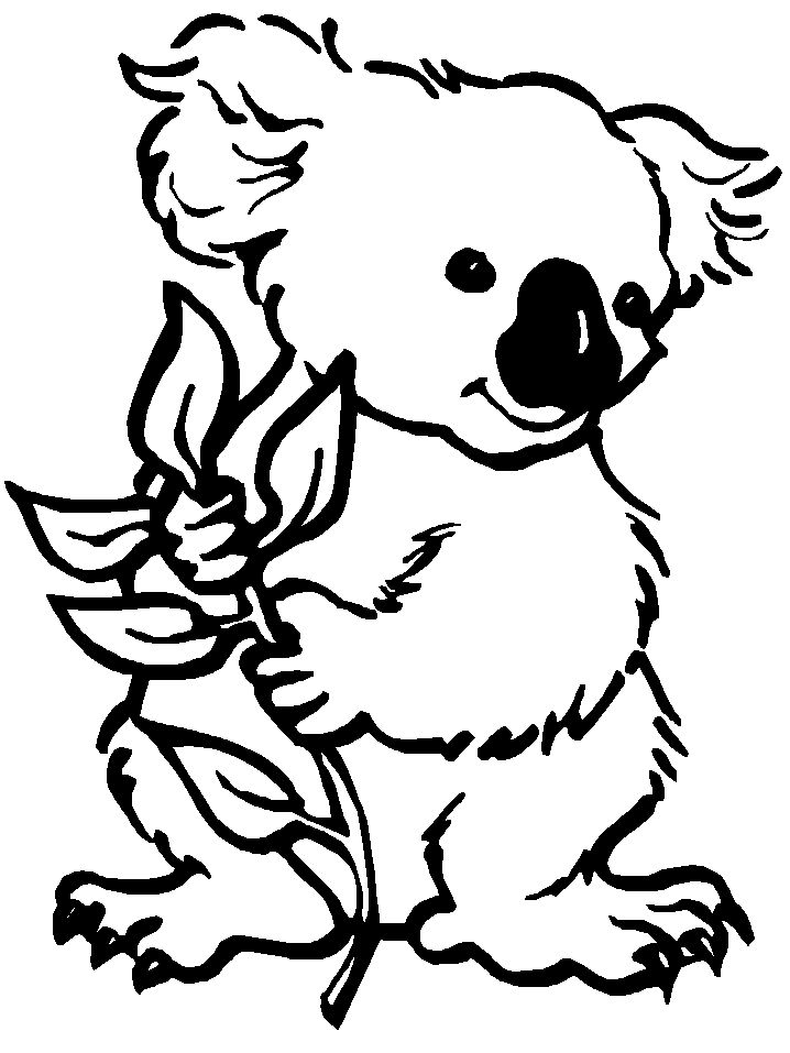 koala colouring in image can be converted to a collage exercise as well image print coloring pagesfree - Sheets To Color