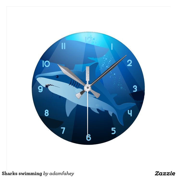 Sharks swimming clocks