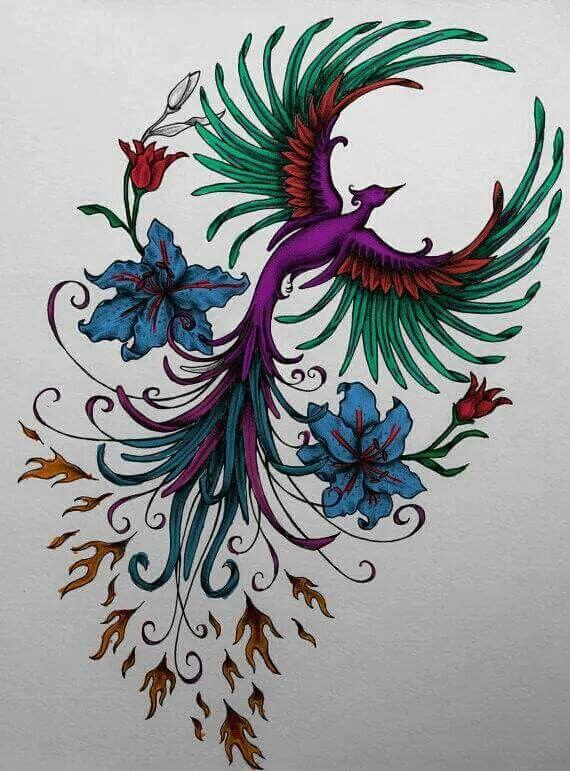 Fully colored purple red blue green orange phoenix beautiful