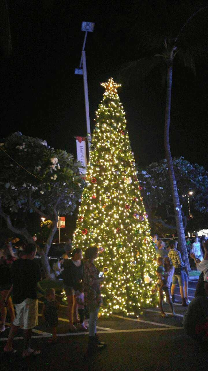 A giant green tree set up at a mall in Hawaii | King Of Christmas ...