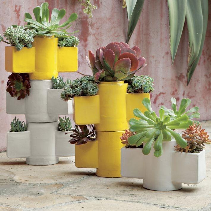 cactus  maceteros west elm