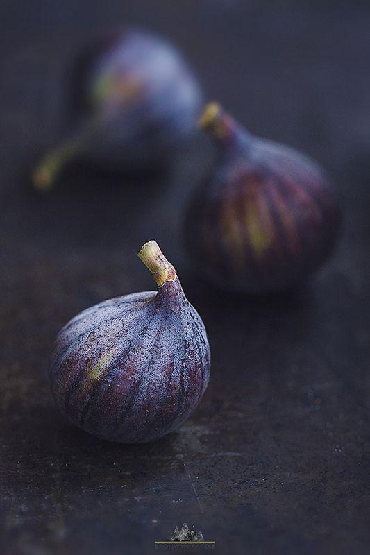 figs II
