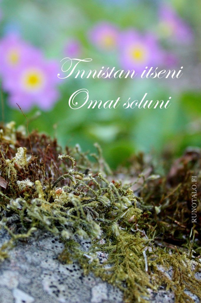 Tunnistan itseni Omat soluni - voimakortti - kivi, sammal ja esikot