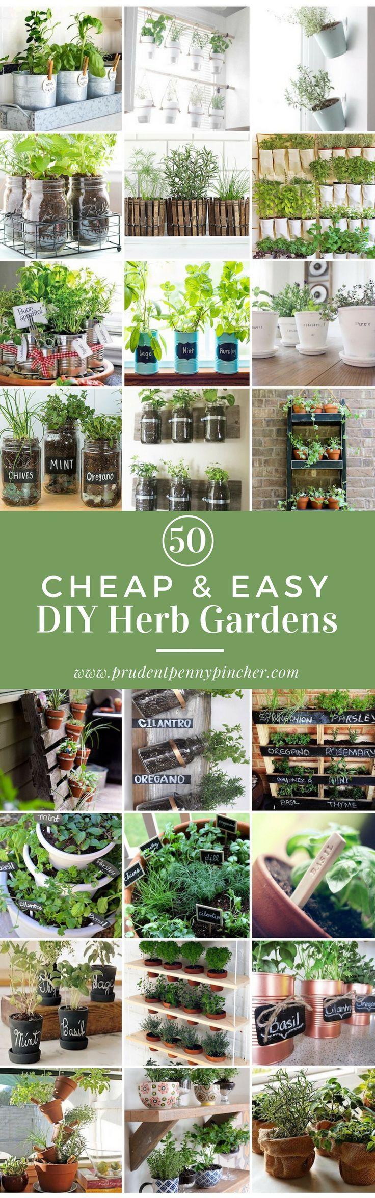 1241 best Outside Decor & Gardening Ideas images on Pinterest ...