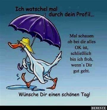 Lustige Guten Morgen Sprüche Facebook | lustig | Funny good
