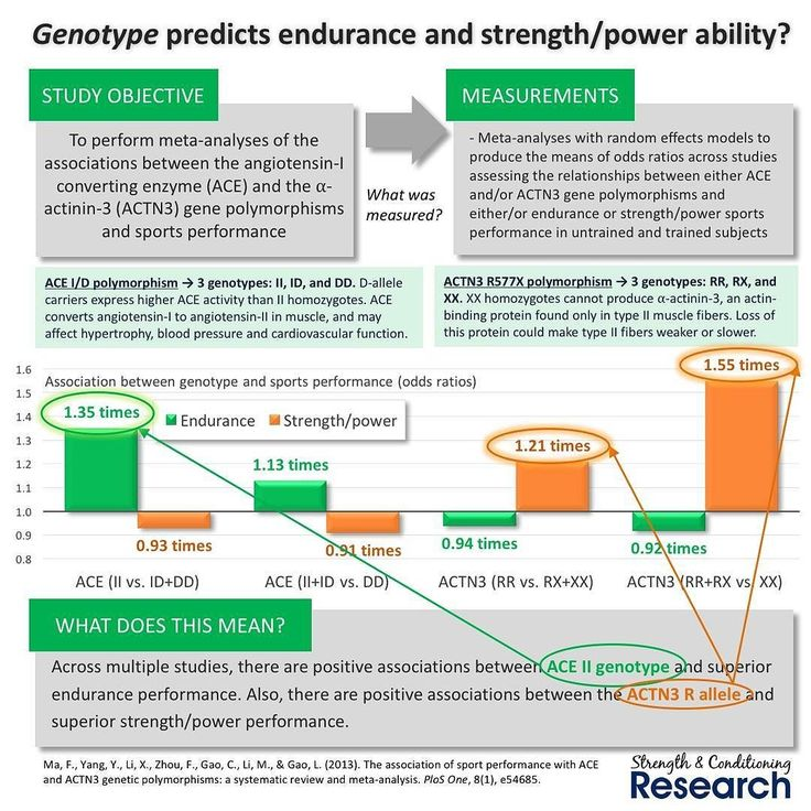 muscle genes and athletic performance essay Genes and sport: are your parents responsible for your wins and losses muscle size large muscle fiber composition (fast- and slow many athletes reach a point where they have to train more often and harder to obtain fewer and fewer performance benefits when athletes reach this point.