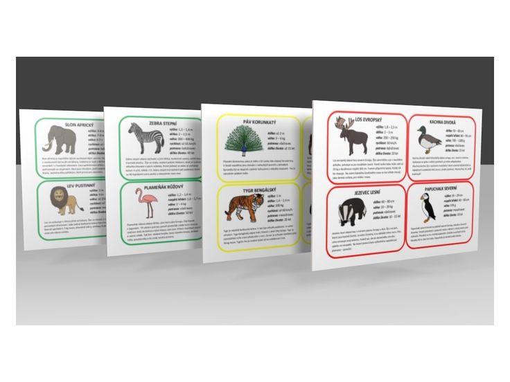 Zvířata světa - informační karty .