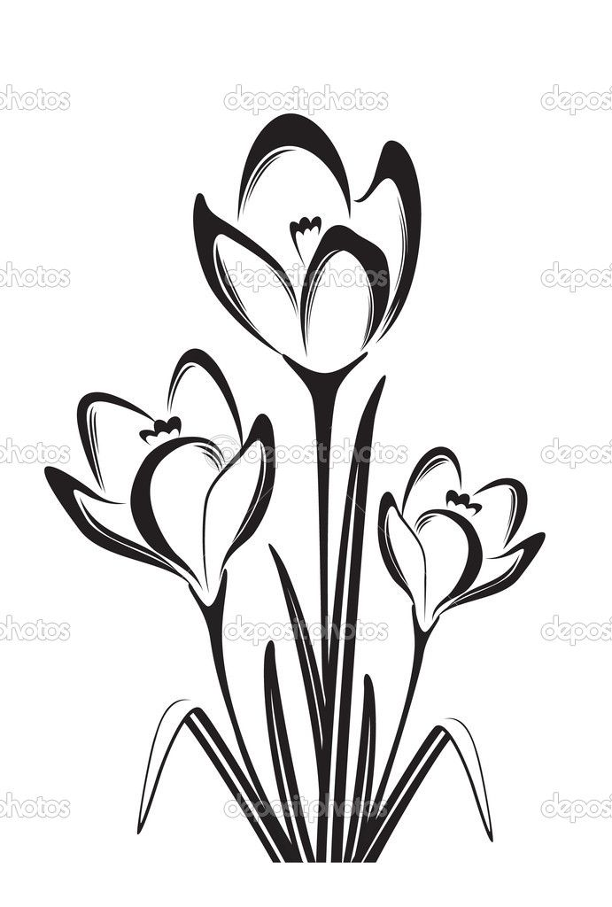 flower black and white drawing - Pesquisa Google ...