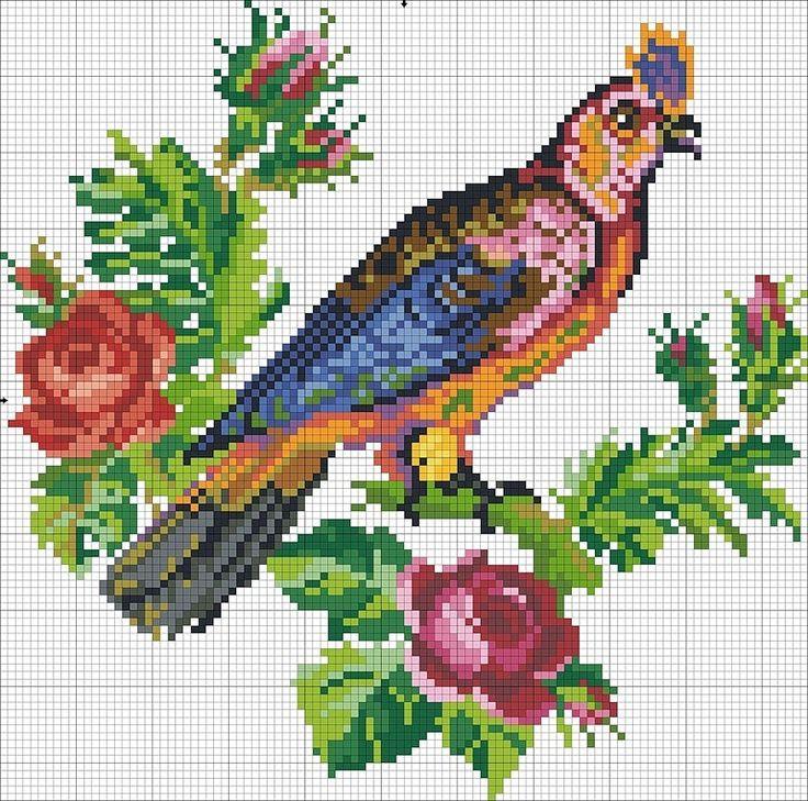 y_37e181f4.jpg 800×793 píxeles