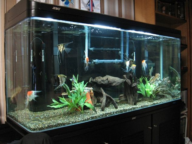 Aquarium shipwreck black background google search for Decoration aquarium 60 litres