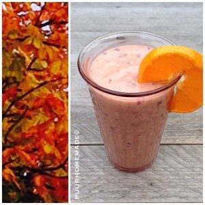 smoothie - Puur Homemade by Cilla Tibbe- www.puurhomemade.nl