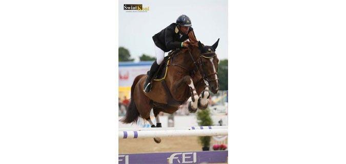 davide kainich a oliva (spagna) al mediterranean equestrian tour CSI **  con Loro Piana Tamarix-F.M con cui ha ottenuto ottimi piazzamenti!