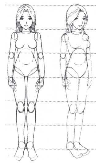 Corpo de frente e meio perfil