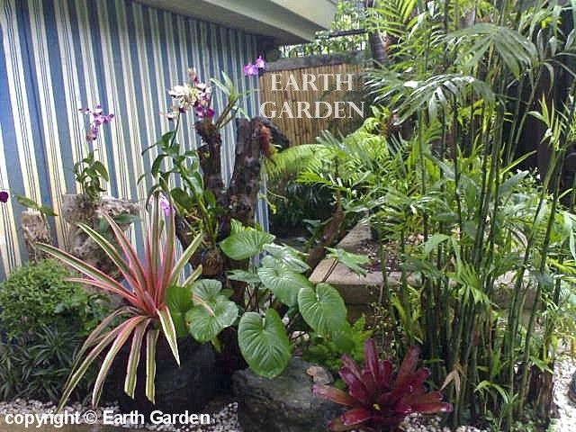 1000 Images About Backyard Landscaping On Pinterest 400 x 300