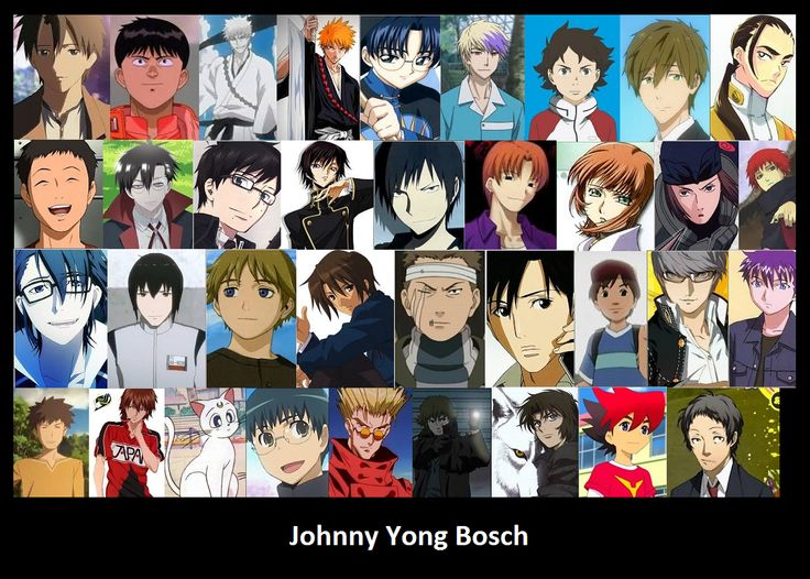 Johnny Yong Bosch - English voice actor